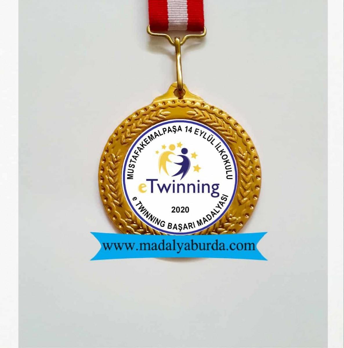 e Twinning başarı ödülü